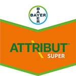Brand tag Attribut Super from Bayer