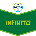 Brand tag Infinito from Bayer